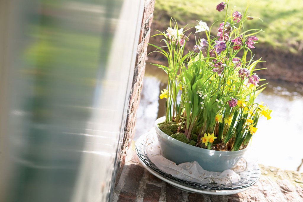 Gestalte lieber ungewöhnlich ;-) | Foto: Blumenbüro Holland