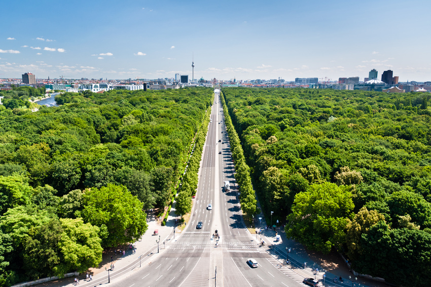 Grün in der Stadt: Bäume müssen heute mehr Belastungen aushalten | © adogg - Fotolia.com