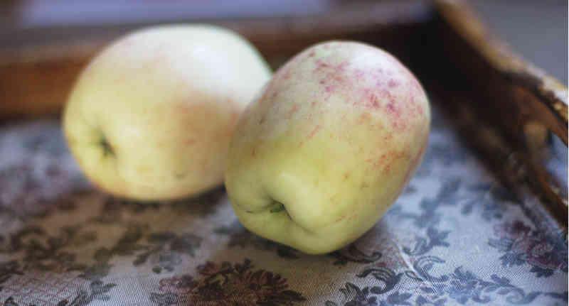 Zu jedem Apfel gibt es eine Geschichte. | Foto: phlora.de