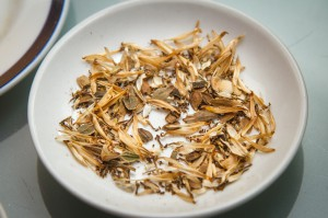 Samen für Saatband | Foto: phlora.de