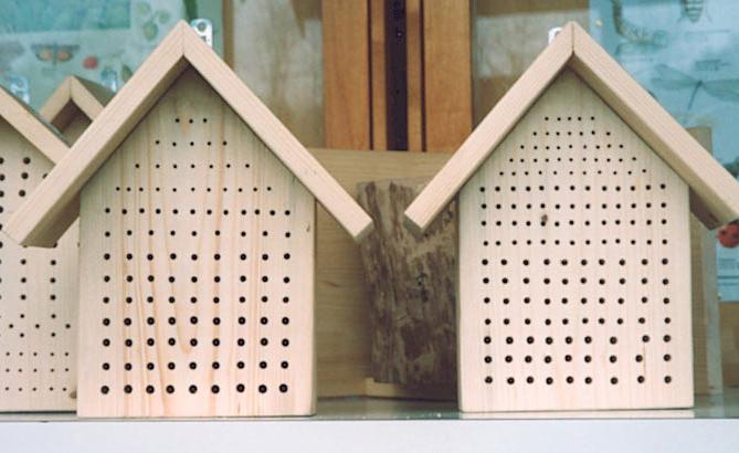 insektensterben und unsere gegenmittel 1 schritt mageres sonnenbeet anlegen. Black Bedroom Furniture Sets. Home Design Ideas