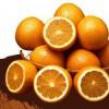 oranges_Illu