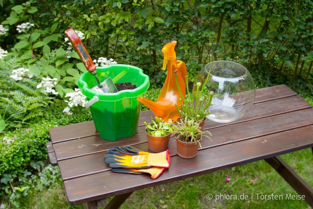 Diese Dinge brauchst du zum Bepflanzen der Schale mit fleischfressenden Pflanzen