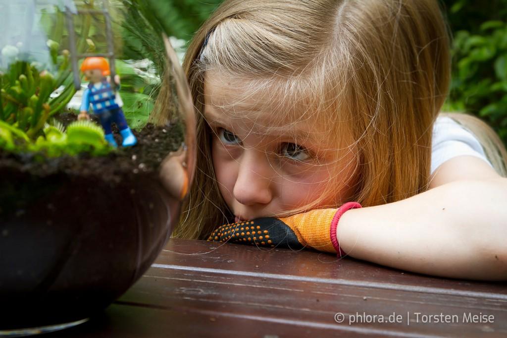 Fleischfressende Pflanzen wie die Venusfliegenfalle faszinieren alle Kinder