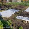 Unsere Gemüsebeete, frisch gewässert und mit Pflanzvlies versehen. | © phlora.de