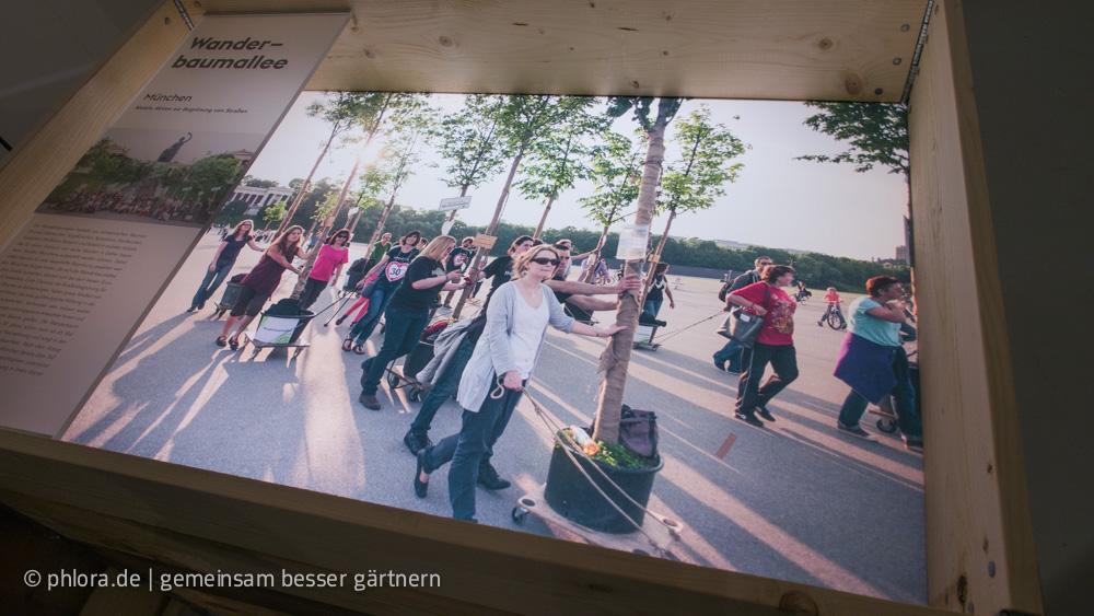 Beispielprojekt aus Stadtgrün 3.0 | Foto: phlora.de