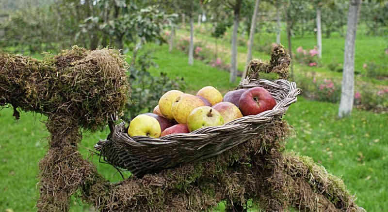 Willkommen im Apfelmuseum | Foto: phlora.de