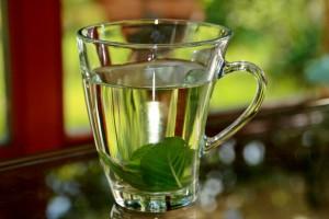 Pixabay_peppermint-tea-352334_1920