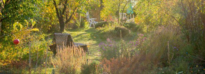 Garten naturnah im Herbst